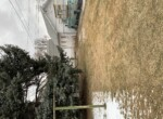 Photo Jan 29, 10 22 53 AM (1)